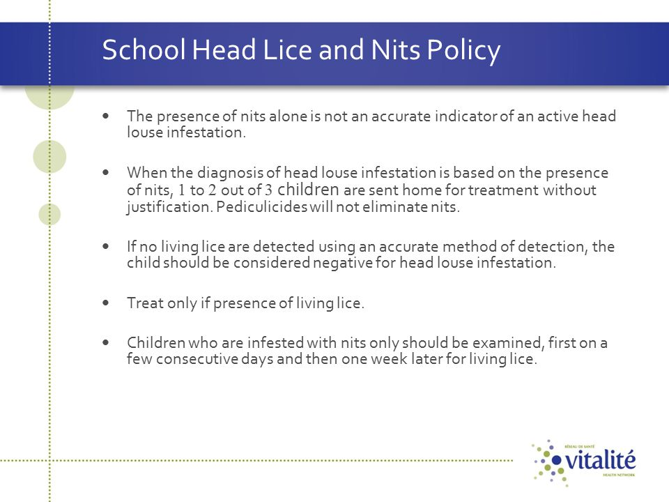 School Head Lice and Nits Policy