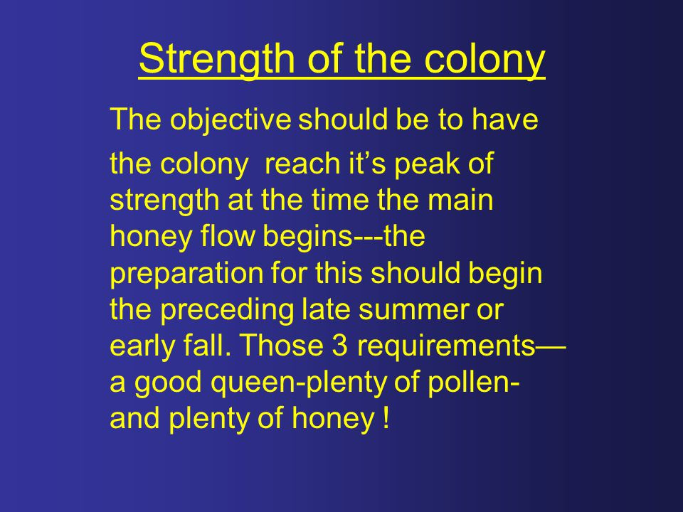 Strength of the colony The objective should be to have