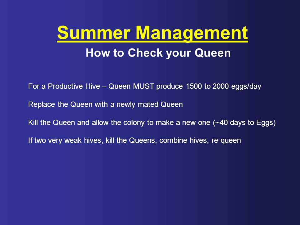 Summer Management How to Check your Queen