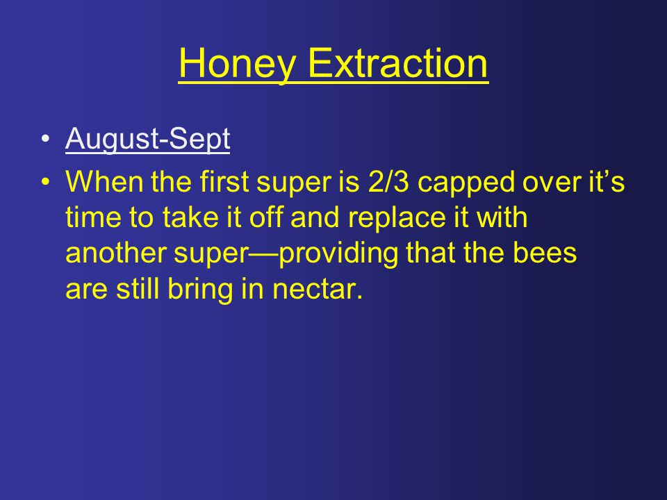 Honey Extraction August-Sept