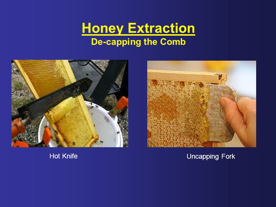 Honey Extraction De-capping the Comb Hot Knife Uncapping Fork
