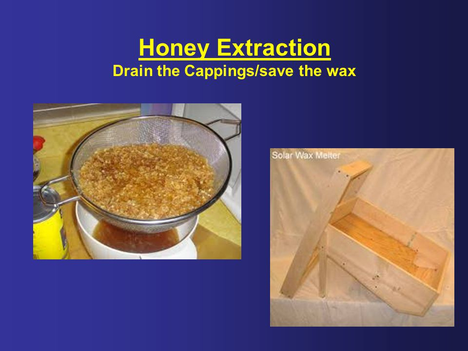 Drain the Cappings/save the wax