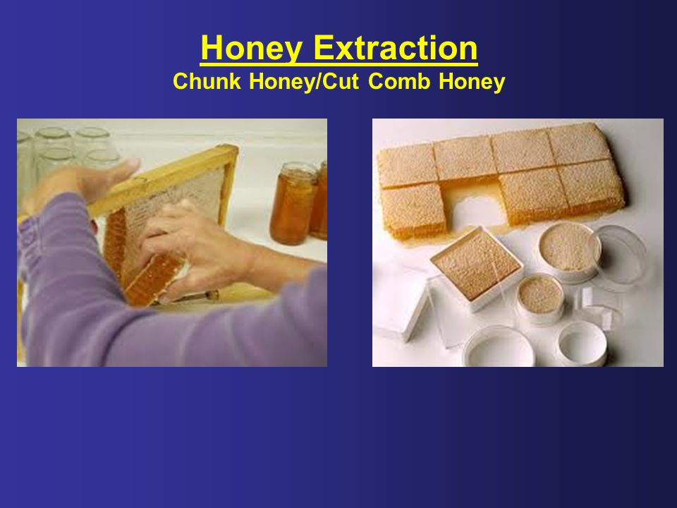 Chunk Honey/Cut Comb Honey