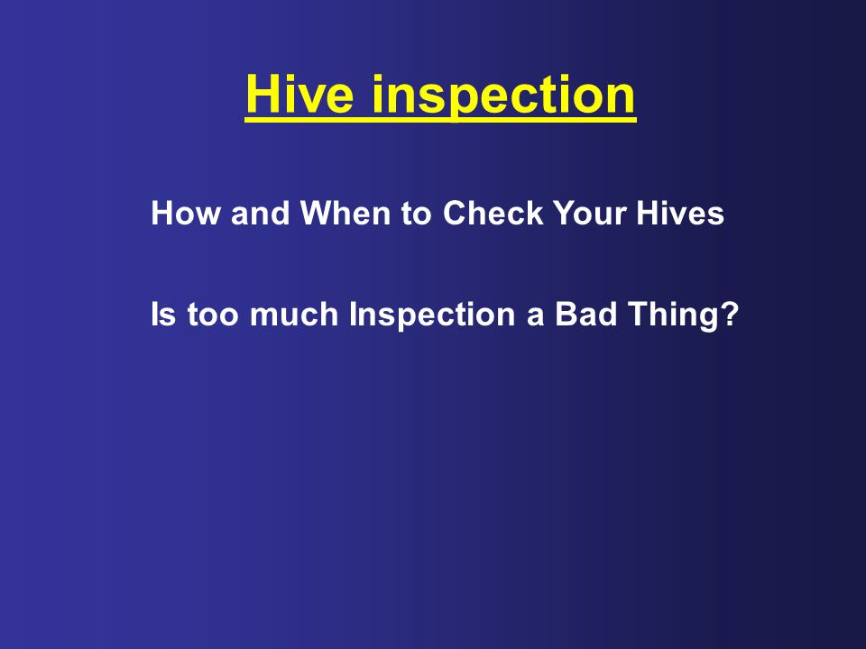 Hive inspection How and When to Check Your Hives