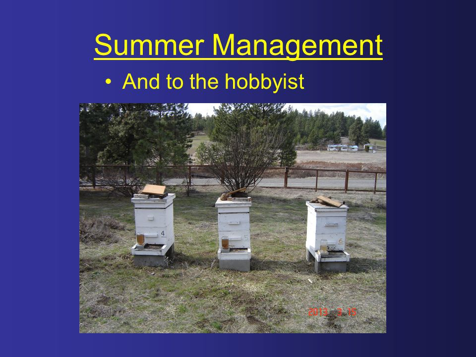 Summer Management And to the hobbyist
