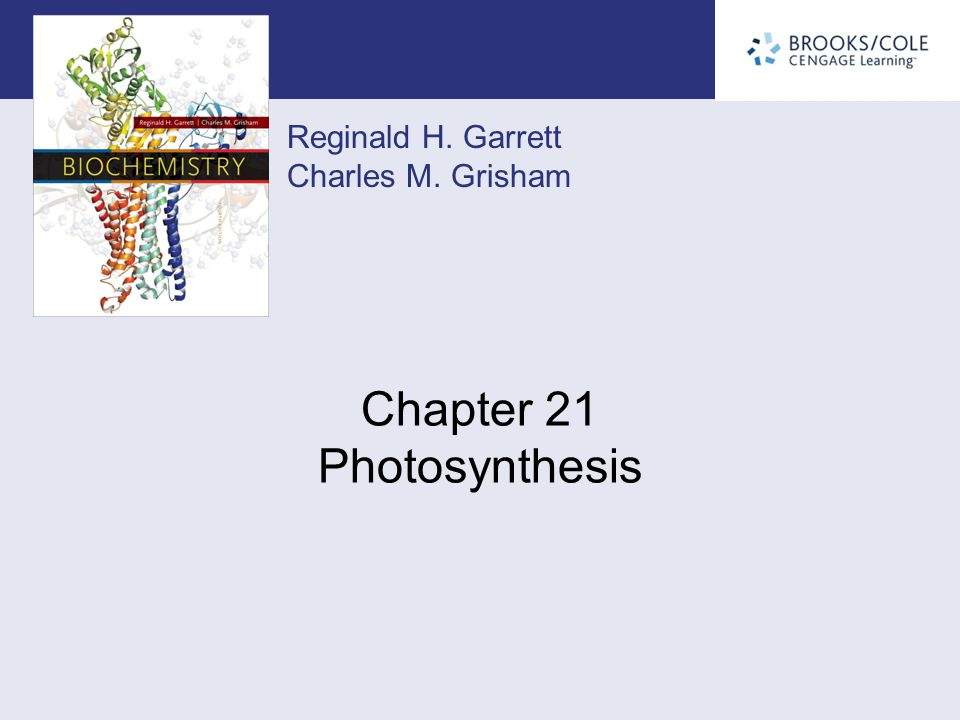 Chapter 21 Photosynthesis