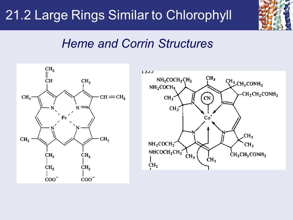 21.2 Large Rings Similar to Chlorophyll