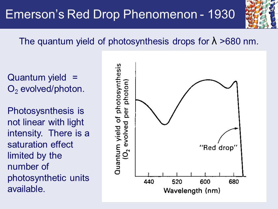Emerson's Red Drop Phenomenon - 1930