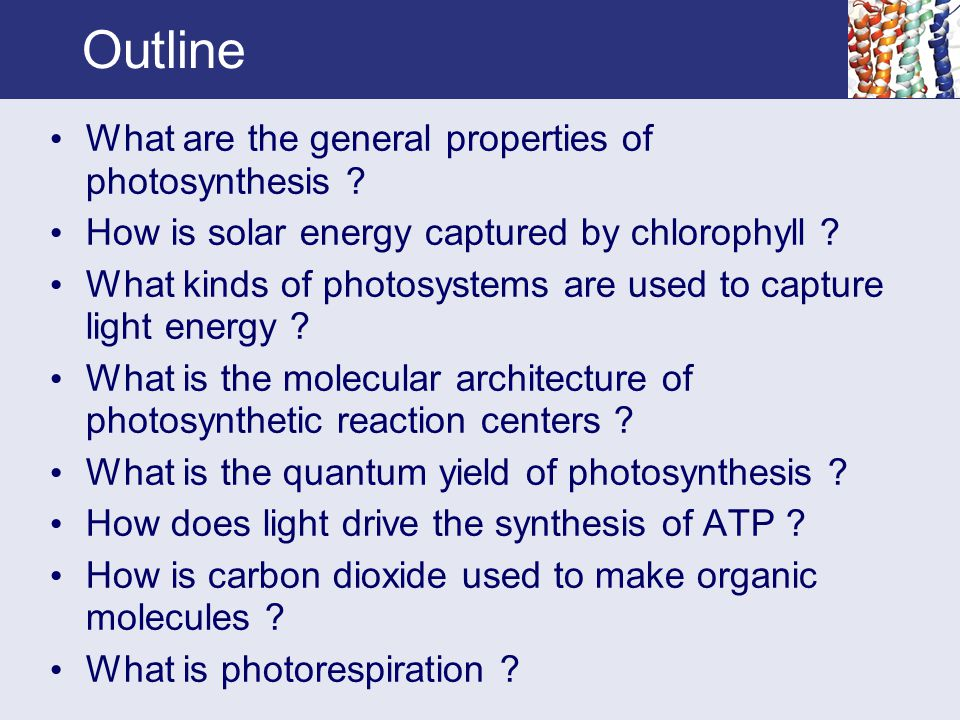 Outline What are the general properties of photosynthesis