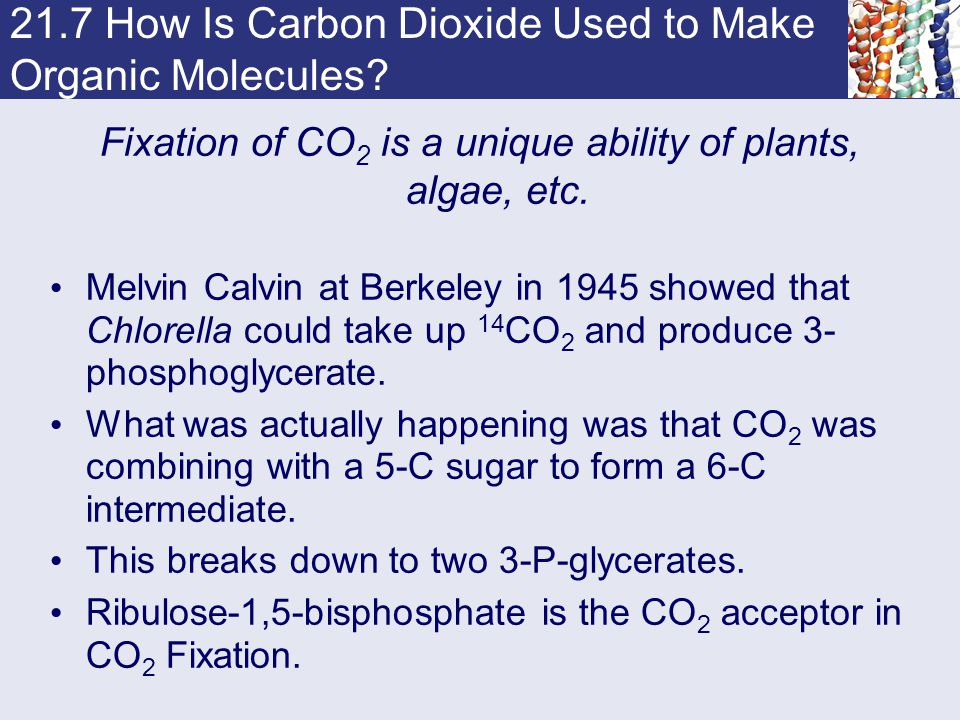 21.7 How Is Carbon Dioxide Used to Make Organic Molecules