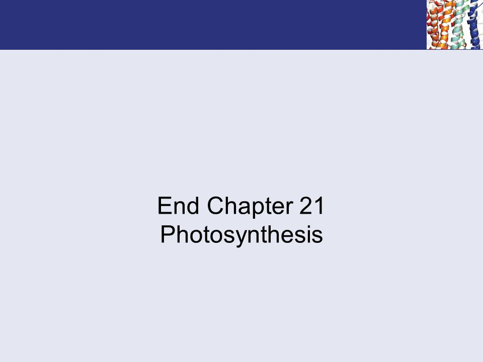 End Chapter 21 Photosynthesis