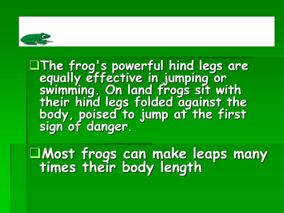 Most frogs can make leaps many times their body length