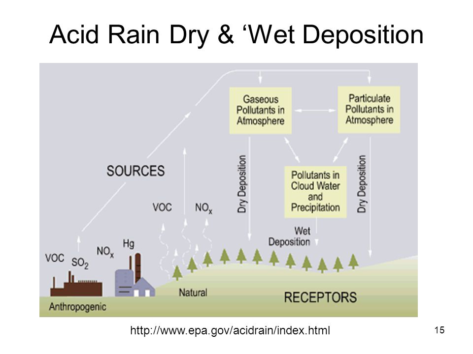 Acid Rain Dry & 'Wet Deposition