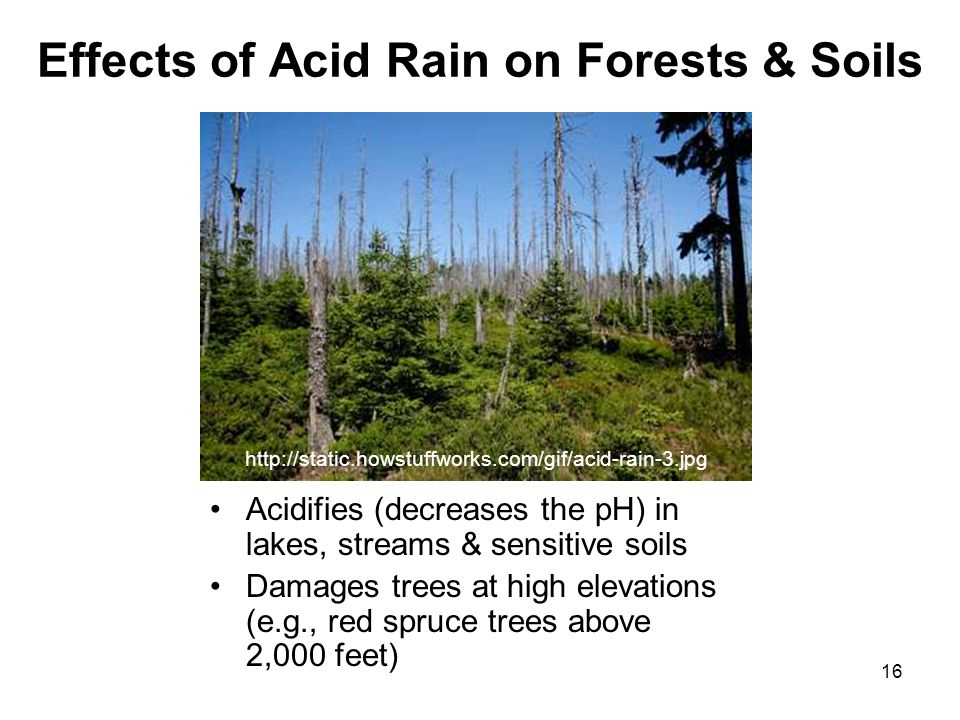 effects of acid rain According to the environmental protection agency, acid rain refers to a mixture of wet and dry deposition (deposited material) from the atmosphere containing higher than normal amounts of nitric and sulfuric acids.