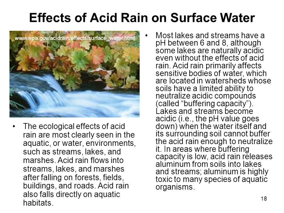 Effects of Acid Rain on Surface Water