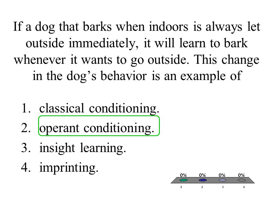 If a dog that barks when indoors is always let outside immediately, it will learn to bark whenever it wants to go outside. This change in the dog's behavior is an example of