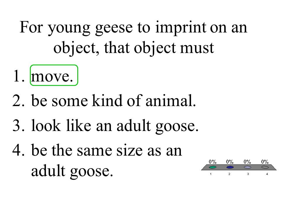 For young geese to imprint on an object, that object must