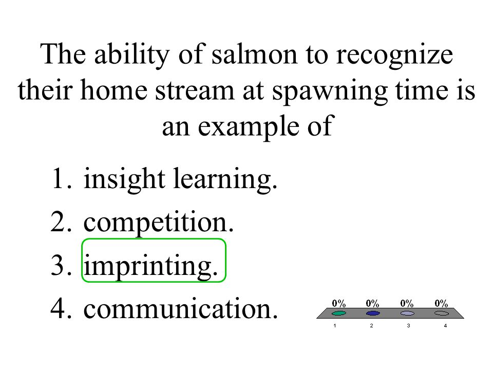 The ability of salmon to recognize their home stream at spawning time is an example of