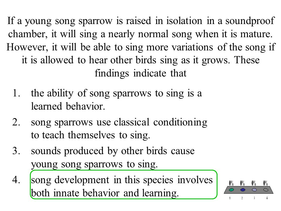 If a young song sparrow is raised in isolation in a soundproof chamber, it will sing a nearly normal song when it is mature. However, it will be able to sing more variations of the song if it is allowed to hear other birds sing as it grows. These findings indicate that