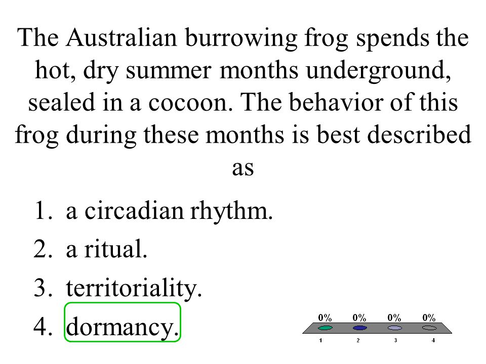 The Australian burrowing frog spends the hot, dry summer months underground, sealed in a cocoon. The behavior of this frog during these months is best described as