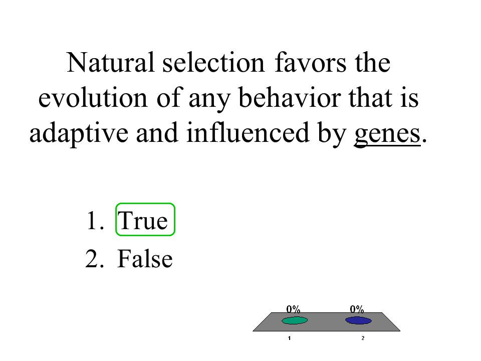 Natural selection favors the evolution of any behavior that is adaptive and influenced by genes.