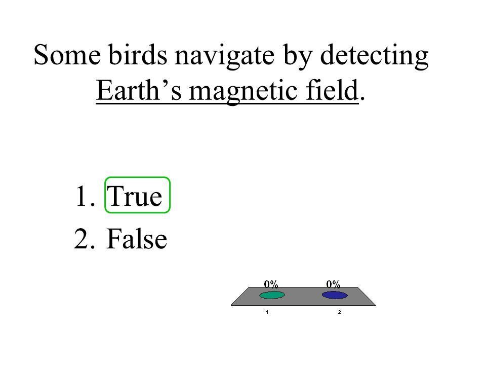 Some birds navigate by detecting Earth's magnetic field.