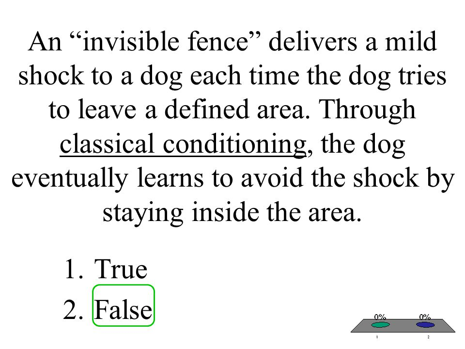 An invisible fence delivers a mild shock to a dog each time the dog tries to leave a defined area. Through classical conditioning, the dog eventually learns to avoid the shock by staying inside the area.