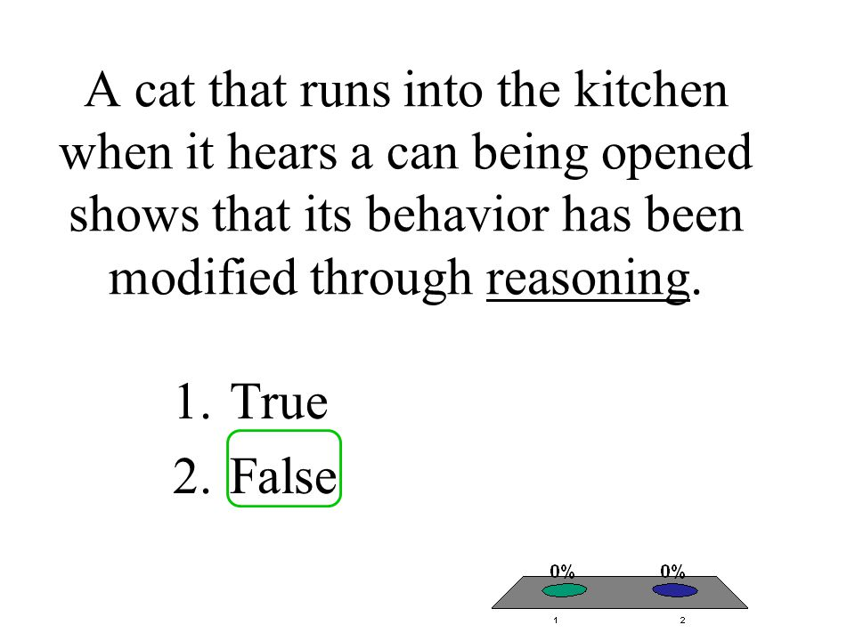 A cat that runs into the kitchen when it hears a can being opened shows that its behavior has been modified through reasoning.