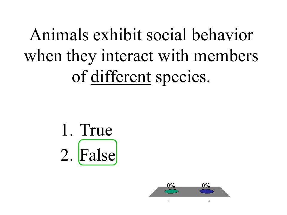 Animals exhibit social behavior when they interact with members of different species.