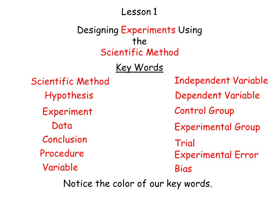 Experiment Ideas Using the Scientific Method