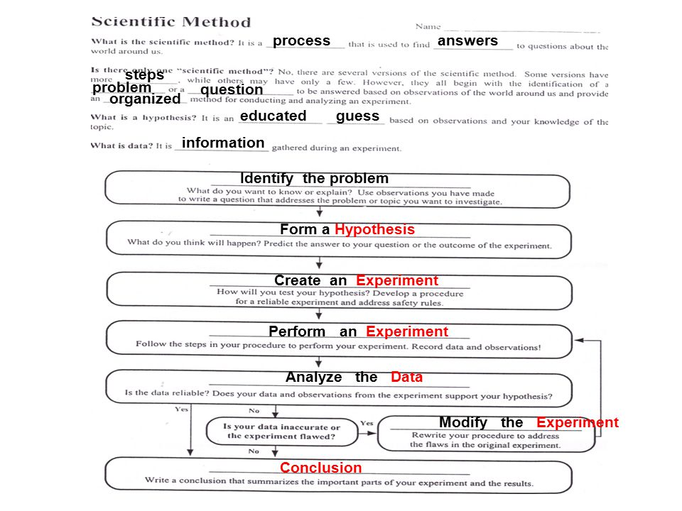 How the scientific method is used to create hypotheses and experiments