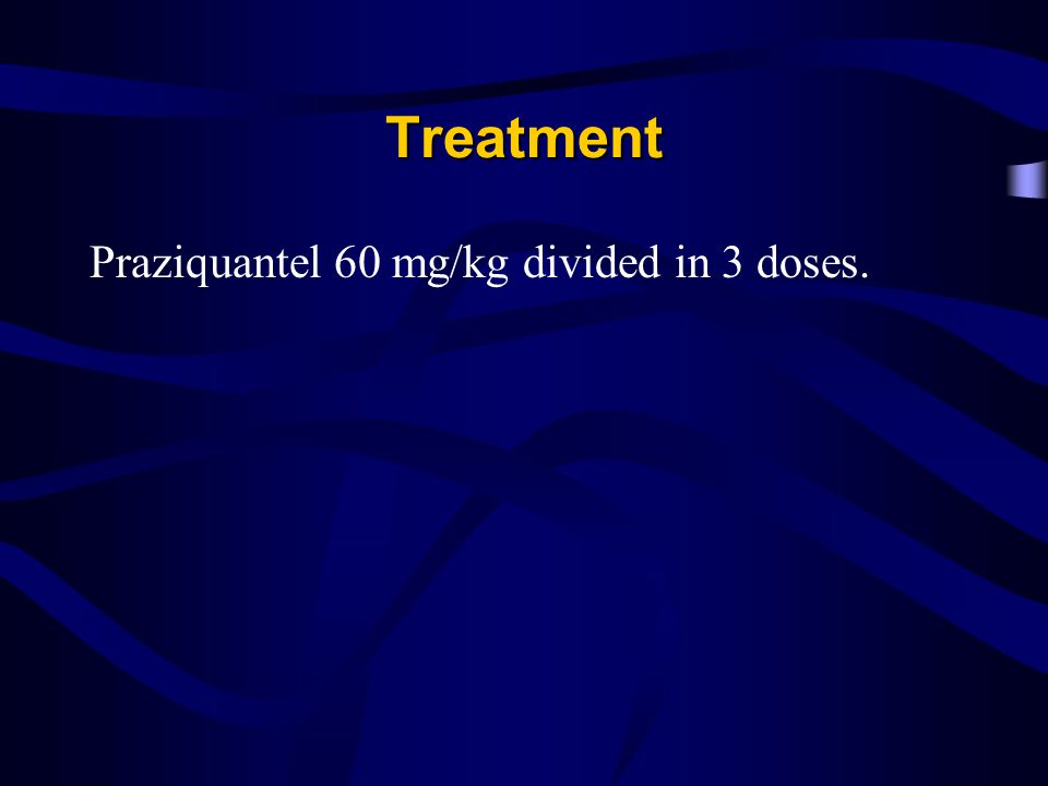 Treatment Praziquantel 60 mg/kg divided in 3 doses.