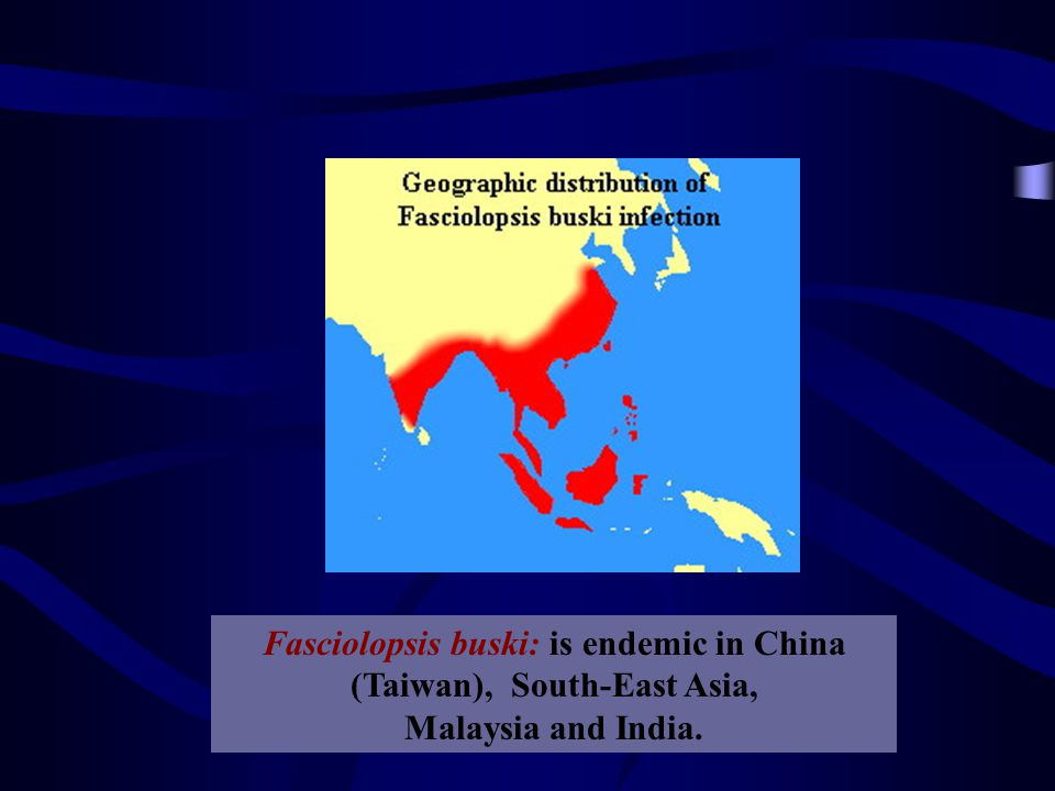 Fasciolopsis buski: is endemic in China, Taiwan, South-East Asia, Malaysia and India.