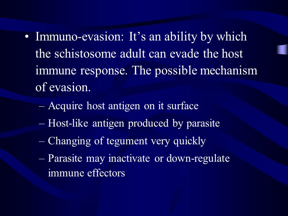 Immuno-evasion: It's an ability by which the schistosome adult can evade the host immune response. The possible mechanism of evasion.