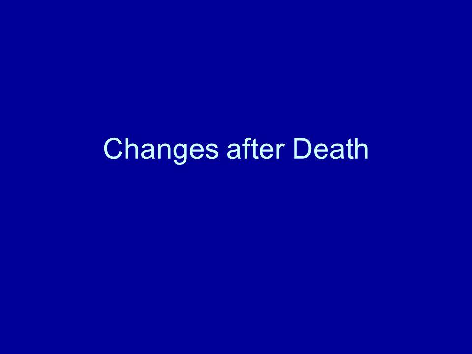 Changes after Death