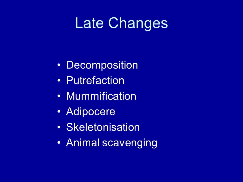 Late Changes Decomposition Putrefaction Mummification Adipocere