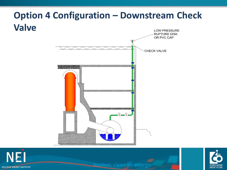 Option 4 Configuration – Downstream Check Valve