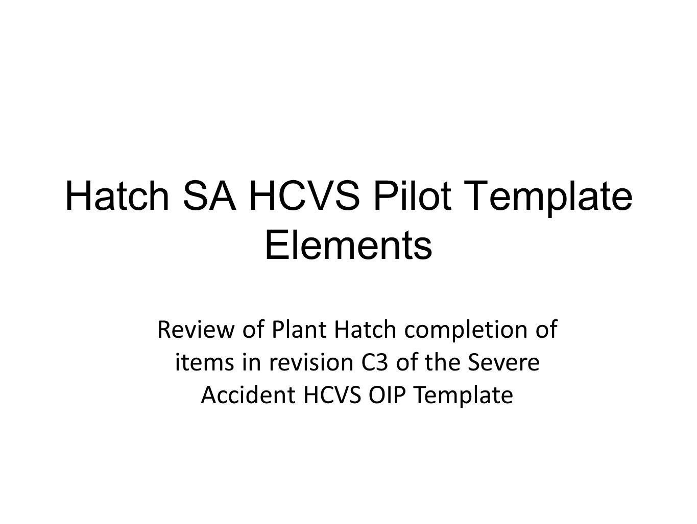 Hatch SA HCVS Pilot Template Elements