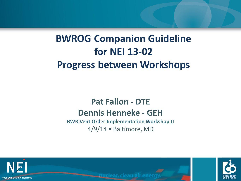BWROG Companion Guideline for NEI 13-02 Progress between Workshops