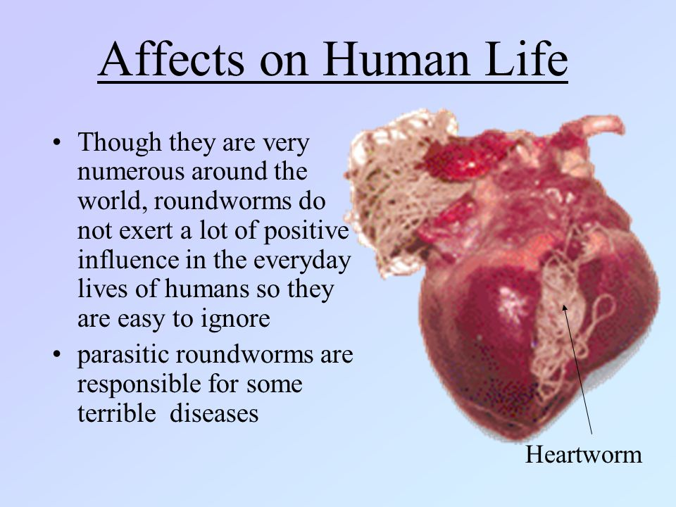 Affects on Human Life