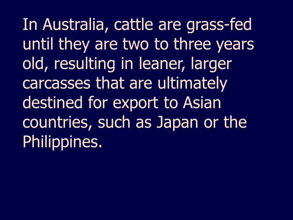 In Australia, cattle are grass-fed until they are two to three years old, resulting in leaner, larger carcasses that are ultimately destined for export to Asian countries, such as Japan or the Philippines.