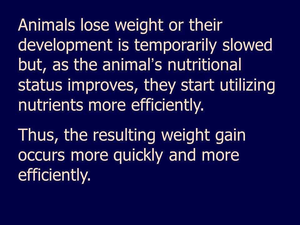 Animals lose weight or their development is temporarily slowed but, as the animal's nutritional status improves, they start utilizing nutrients more efficiently.