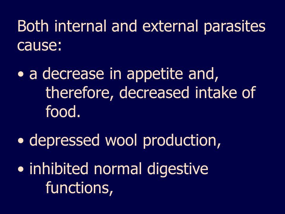 Both internal and external parasites cause: