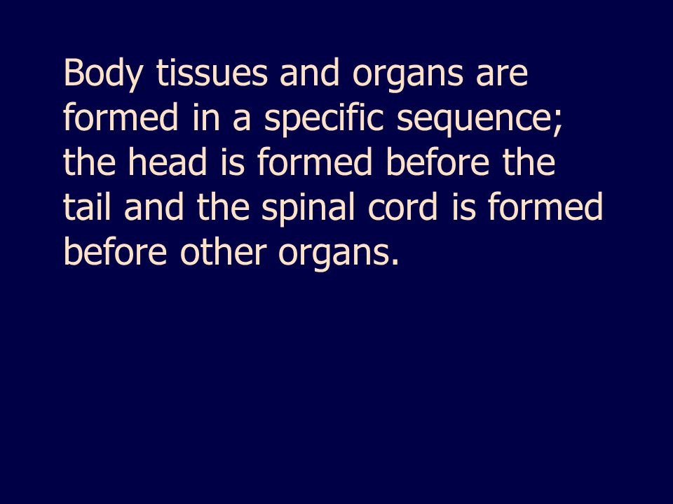Body tissues and organs are formed in a specific sequence; the head is formed before the tail and the spinal cord is formed before other organs.
