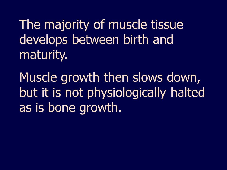 The majority of muscle tissue develops between birth and maturity.