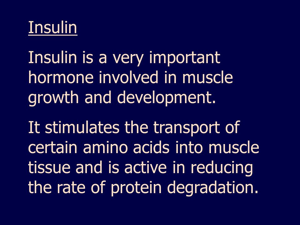 Insulin Insulin is a very important hormone involved in muscle growth and development.