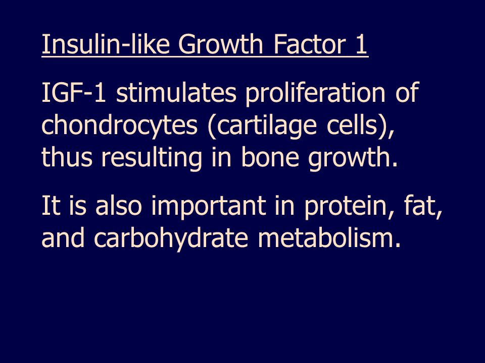 Insulin-like Growth Factor 1