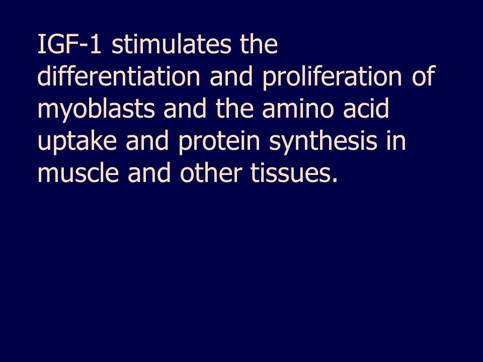 IGF-1 stimulates the differentiation and proliferation of myoblasts and the amino acid uptake and protein synthesis in muscle and other tissues.