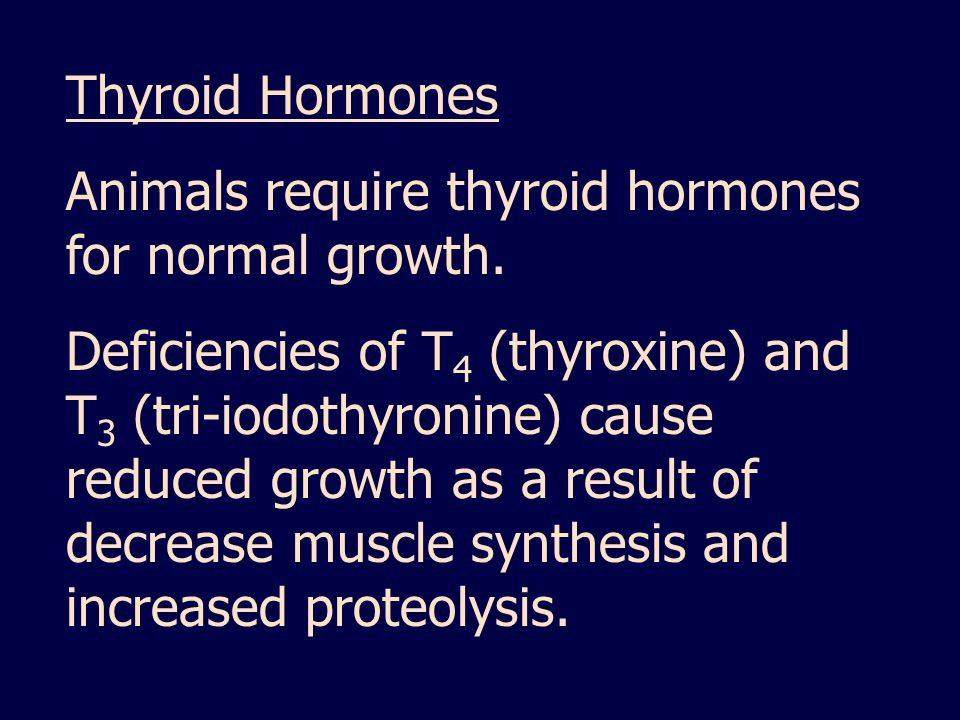Thyroid Hormones Animals require thyroid hormones for normal growth.