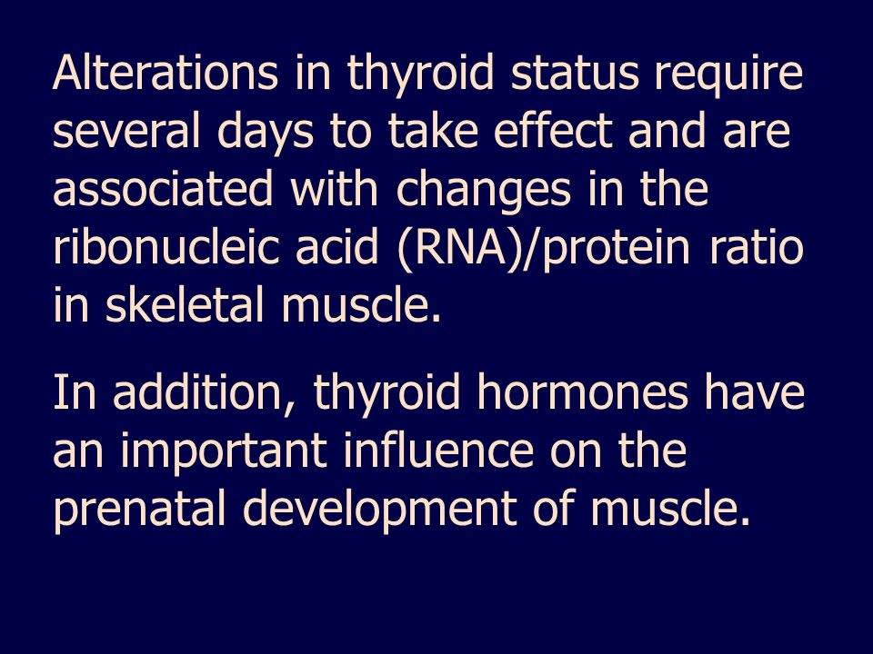 Alterations in thyroid status require several days to take effect and are associated with changes in the ribonucleic acid (RNA)/protein ratio in skeletal muscle.